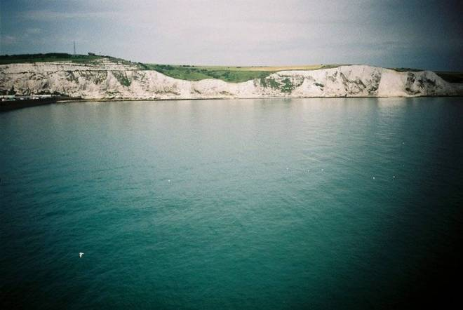 The Dover welcome committee of porpoises