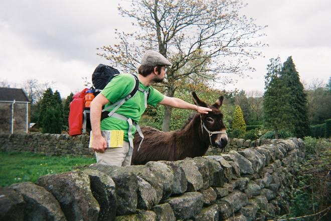 Dan molesting donkey