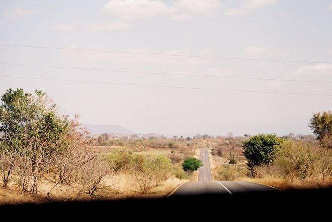 Safari time